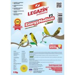 F.3 EnergyMedium -Legazín-