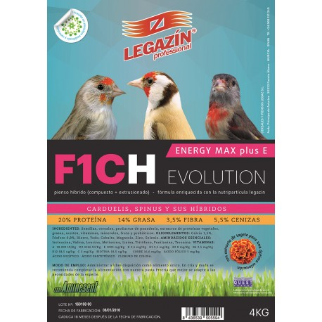 F1CH Energy Max Plus E Evolution