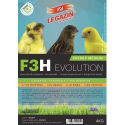 F3H Energy Medium Evolution