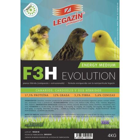 F3H Energy Medium Evolution