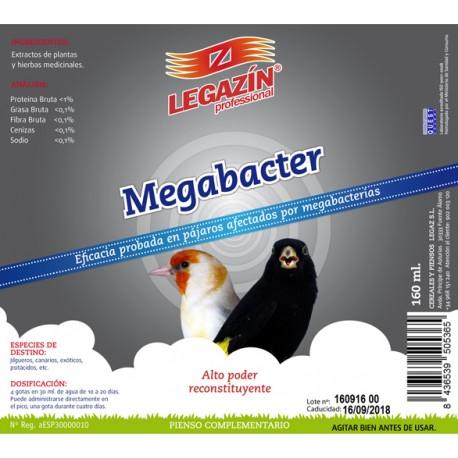 MEGABACTER