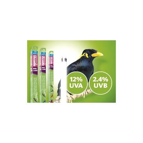 BIRD LAMP FLUORESCENTE PARA AVES 36W
