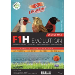 F1H Energy Max Evolution
