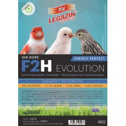 F2H Energy Perfect Evolution